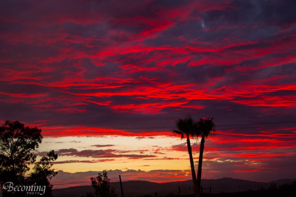 Santa Nella Sunset